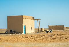 "Sahara   TrinDiego (TrinDiego) Tags: morocco 2018 trindiego sahara desert sand berber almamlakahalmaghribiyah ""western kingdomالمَغرِبⵍⵎⵖⵔⵉⴱ مرزوقة الصحراء merzouga صحراء northafrica africa kingdomofmorocco ⵜⴰⴳⵍⴷⵉⵜⵏⵍⵎⵖⵔⵉⴱ المملكةالمغربية almaġrib"