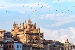 Lumière sur les ghats..Varanasi (geolis06) Tags: geolis06 asia asie inde india uttarpradesh varanasi benares gange ganga ghat inde2017 olympus religion religious hindouisme hindouism hindu banaras