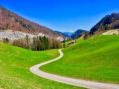 Hiking trail near Thiersee, Tyrol, Austria (UweBKK (α 77 on )) Tags: hiking hike trail path weg wandern wanderung ausblick view green fields trees grass forest alps mountains panorama thiersee tyrol tirol austria österreich europe europa iphone