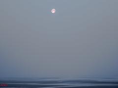La Lune (MRI2009) Tags: plage merdunord mer lune nieuwpoort