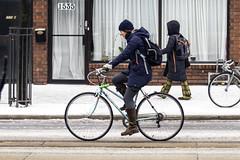 Toronto ice storm 2018 - cycling Dundas (jer1961) Tags: toronto snow ice snowstorm icestorm torontoicestorm torontoicestorm2018 brockton sleet cyclist bicycling bike dundasstreet