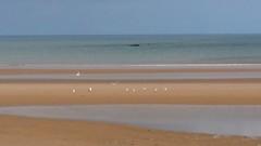 20180415_152927 (jlfaurie) Tags: normandie omahabeach monument monumento dday jlfr mpmdf mechas débrquement plage playa beach memorial mémoire honneur 6juin1944
