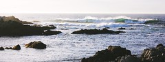Peace and Power (Therese Trinko) Tags: ocean california pacificgrove monterey rocks waves sun