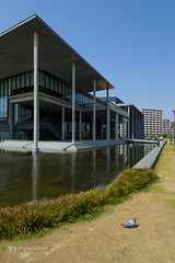 Exterior view of Tokyo University of Science, Library (東京理科大学 葛飾キャンパス 図書館棟) (christinayan01 (busy)) Tags: tokyo japan architecture building perspective grass ground library university