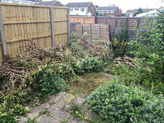 Cleared out the house but the Garden??? (more Mark Hewins) Tags: clearance justthetwoofus mums personalitems respect love mother