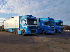 DAF XF 105.460 - Scania R450 - DAF XF 106.460 -  MOP's - Jansen Transport Urk (Malmöstad) Tags: daf xf 105460 scania r450 106460 mops jansen transport urk holland dutch sweden swedish svensk sverige truck trailer camion lkw lastbil triple tripple parked sky euro blue parking
