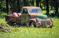 The Old Abandoned Pickup in a Field of flowers (Kool Cats Photography over 10 Million Views) Tags: truck field flowers grass green oklahoma classic photography pickup abandoned old outdoor