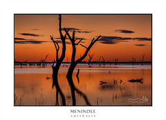 Dusk skies over the magnificent Menindee Lake (sugarbellaleah) Tags: menindee desert landscape trees silhouettes lake water sunset sundown dusk oasis menindeelake dead treetrunk reflections orange contrast glow sky clouds travel tourism outback explore scenic scenery pretty beautiufl tranquil tranquility remote nsw australia ecosystem political darlingriver lakesmanagement depletion murraydarlingbasinauthority