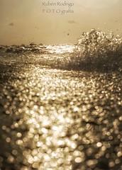 We sink (Mister Blur) Tags: shallow depthoffield dof low pointofview pov open golden sea mar dorado distancia focal uaymitún yucatán méxico bokeh dots waves nikon d7100 snapseed rubén rodrigo fotografía