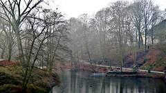 Winter Sunday (farmspeedracer) Tags: january januar 2018 park lake fog mist landscape tree sunday water reflection man people silence