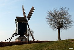 Windmill De Hoop (JanJGorter) Tags: canoneos750d canon netherlands nederland westbrabant brabant roosendaal wimdmolens molens mills windmills