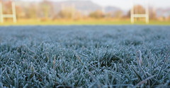A frosty rugby field this morning, chilly chilly! (chris p-w) Tags: rugbyfield march frosty bokeh