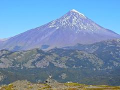 Vista del Lanín (Mono Andes) Tags: andes chile chilecentral regióndelaaraucanía parquenacional volcán volcano volcanoe volcánlanín parquenacionalvillarrica puesco