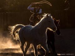 On Target (James Neeley) Tags: santafe newmexico arthurmeyerson ranchphotoshoot coloroflight jamesneeley