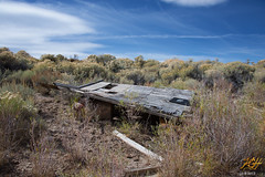 Lost in the Sagebrush (KGHofSF) Tags: ghosttown gold kgh kghofsf nevada oldwest osceola usa vegetation abandoned decay desert deserted empty gone left mining past photo photograph photography plywood sagebrush shelter baker unitedstates us