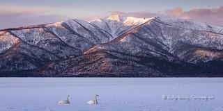 Lake Kussharo, dawn