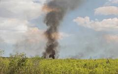 Smoky Column (ACEZandEIGHTZ) Tags: smoke everglades fire brushfire wildfire nikon d3200 tamiami trail us41 alligator alley