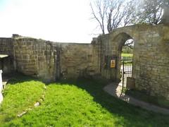 P1080158 (petelovespurple) Tags: ryedale northyorkshire yorkshire malton