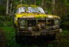 The bush truck (mysticislandphoto) Tags: truck abandoned relic mossy quatsino