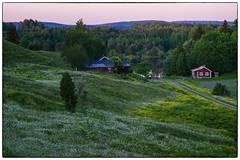 June 2008 Revisited #5 (Krogen) Tags: norge norway norwegen akershus romerike nes vormsund krogen olympuse3 landscape landskap sommer summer