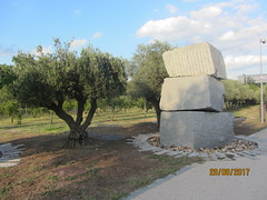 Three rocks, three trunks! Madrid Rio : a marvel of urban planning! (d.kevan) Tags: olivetrees trees paths parksandgardens madridrio madrid spain sculptur stone abstractsculptures fruittrees royalpalace