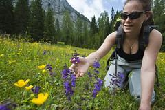 montagna estate (valeriabuzzi) Tags: trekking fiori prato prati