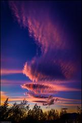 The Third Portrait (niggyl (well behind)) Tags: hobart hobarttasmania sonyilce7rm2 sony sonya7rii sonyalpha7 zeiss zeissbatis2818 zeissbatis1828 batis sunset cirrus altocumulus cloudsstormssunsetssunrises cloudporn cloud cloudformations sundown zeisslens zeissemount