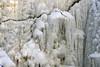Jägala juga (Jaan Keinaste) Tags: pentax k3 pentaxk3 eesti estonia loodus nature harjumaa jõelähtmevald jägalajuga juga waterfall wesi water jää ice 20180318