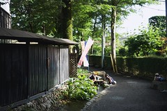 2018年6月24日 (atmo1966) Tags: digitalphotography stroll sony sonydscr1 carlzeiss tokyo kokubunji
