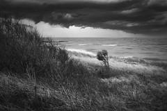 Spring Storm (Thomas Pohlig) Tags: storm storms seashore sea seascape ocean bay capemay jersey jerseyshore beach beachgrass clouds weather blackandwhite blackandwhitephotography monochrome mono