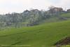Green slope (srkirad) Tags: slope serbia srbija valjevo travel spring sunny green trees