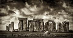 7124SE Stonehenge (foxxyg2) Tags: stone standingstones stonehenge druids religion mono monochrome bw blackwhite silvereffects niksoftware wiltshire