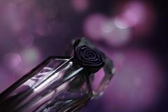 Mon Trésor (*c*j*) Tags: 7dwf perfume crazytuesdaytheme lancôme rose mauve parfum lifeisarainbow pourpre purple