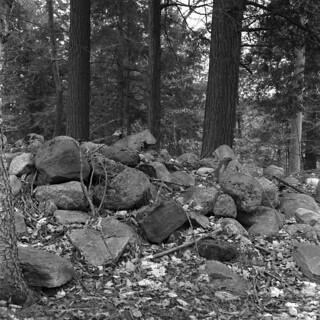 Farmer's Field Stone Pile
