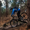 Log Roll (Gee & Kay Webb) Tags: mtb mountainbike bike bicycle santacruz 5010 trails trees riding outdoors forest cycling cannockchase