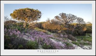 Equinoccio 075