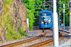 91 Stockholm Juin 2018 - Lindingö (paspog) Tags: lindingö stockholm suède sweden schweden june juin juni 2018 tramway
