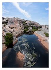 Rock pool (leo.roos) Tags: rockpool sonycarlzeissvariotessarfe1635mmf4zaoss variotessar16354 sel1635z variotessartfe41635 sonycz16354 smögen rock rots scherenkust archipelago swedenspring2018 a7rii smögendyxummeetjune2018 darosa leoroos bohusgranite