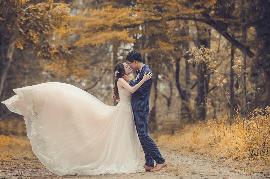 42044260875 cb09d7b7af o [台南自助婚紗] Albert & Vicky/范特囍手工婚紗