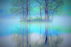 Sohara-lake of morning mist (chikaraamano) Tags: lake misttrees morning encased fantastic spectacle pastel atmosphere beauty lovely coolwonderful canvas monopoly earlysummer natureoutdoor japan