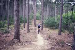 Larose Forest Trails (Richard Pilon) Tags: mtb laroseforest mountainbikes mountainbiking mountainbike