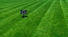 Please... keep off the grass. (Giloustrat) Tags: london britain pentax k3 lawn shadow sign green pentaxflickraward