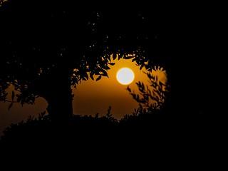 Enjoy Every Sunset.....Look Forward To Every Sunrise (7DWF Crazy Tuesday Theme - Sun, Moon or Stars)
