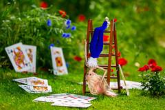 Playing around Alice in Wonderland theme (PumaNoire) Tags: tan tendercreation tendercreationdoll tender tendercreationcom tedercreationdoll creation anna annadobryakova dobryakova rachel