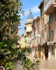 Nyons, Drôme (Markjone) Tags: olives vignoble cotedurhône france drôme nyons