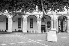 Vella_Francesco_Paolo_542#9