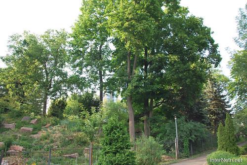 Київ, Ботанічний сад імені Фоміна Ukraine InterNetri 13