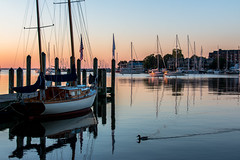 IMG_5368 (Fozzybeers) Tags: annapolis boats maryland sailing water sail dawn sailboat bay landscape eastcoast beautiful beautifullight boat boating chesapeake clouds coast cloudscape colors d