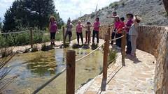 Visita-Area-Recreativa-Puerto-Lobo-Escuela Hogar-Asociacion-San-Jose-Guadix-2018-0013 (Asociación San José - Guadix) Tags: escuela hogar san josé asociación guadix puerto lobo junio 2018
