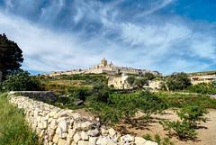 Medina (Rob McC) Tags: landscape cityscape fortifiedtown fortress medina malta sky countryside hdr